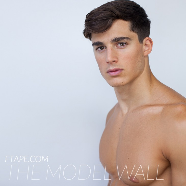 writing essays for money - Pietro-Boselli-The-Model-Wall-FTAPE-07-730x730
